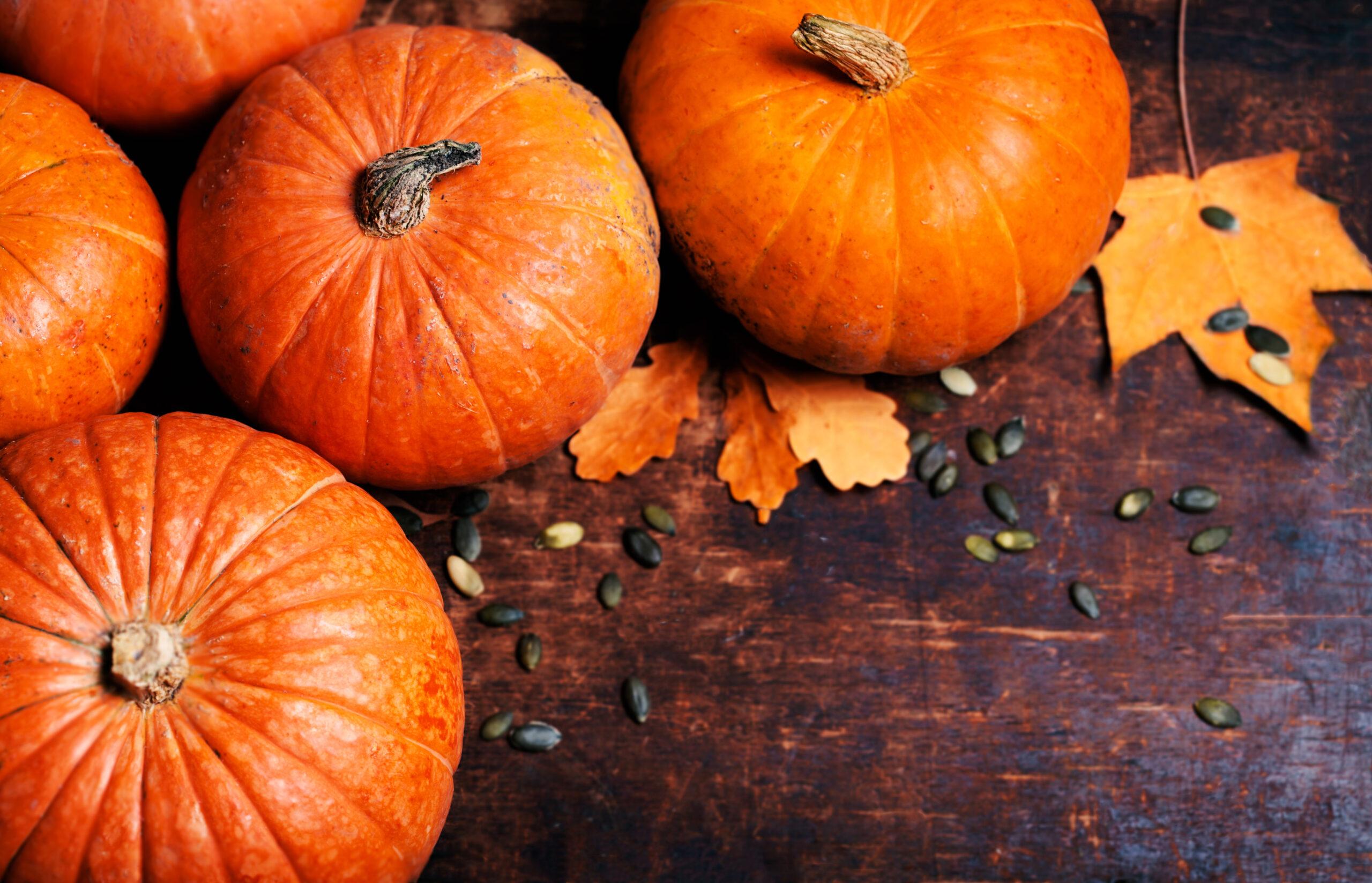 Herbstlicher Genuss: Kürbis Rezepte und Fakten